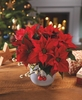 ♥ Wishing You A Warm Christmas