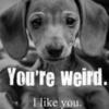 you're weird........ I like you