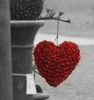 Hanging love on your page ღ