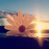 Good morning sunshine ☀️