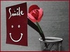 ♥ Smile ♥