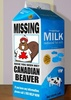 Have you seen this beaver?