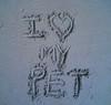 I <3 My pet