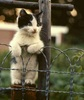 Checking u out ♥