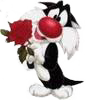 a rose for my pet :-)